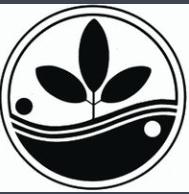 Academy of healing RAADfest.png