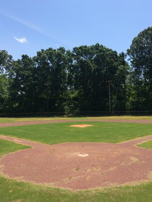 On: Lions Field — Our Jackson Home