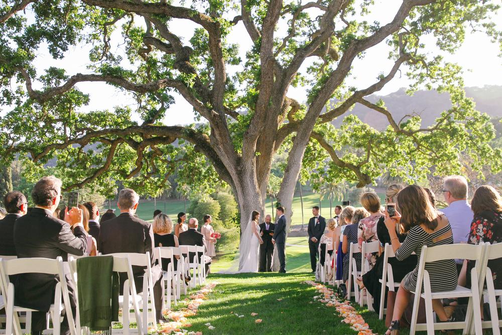 3-28-15_Wedding-816.jpg