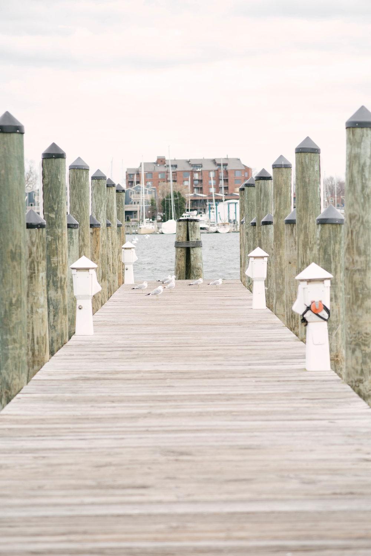 annapolis docks