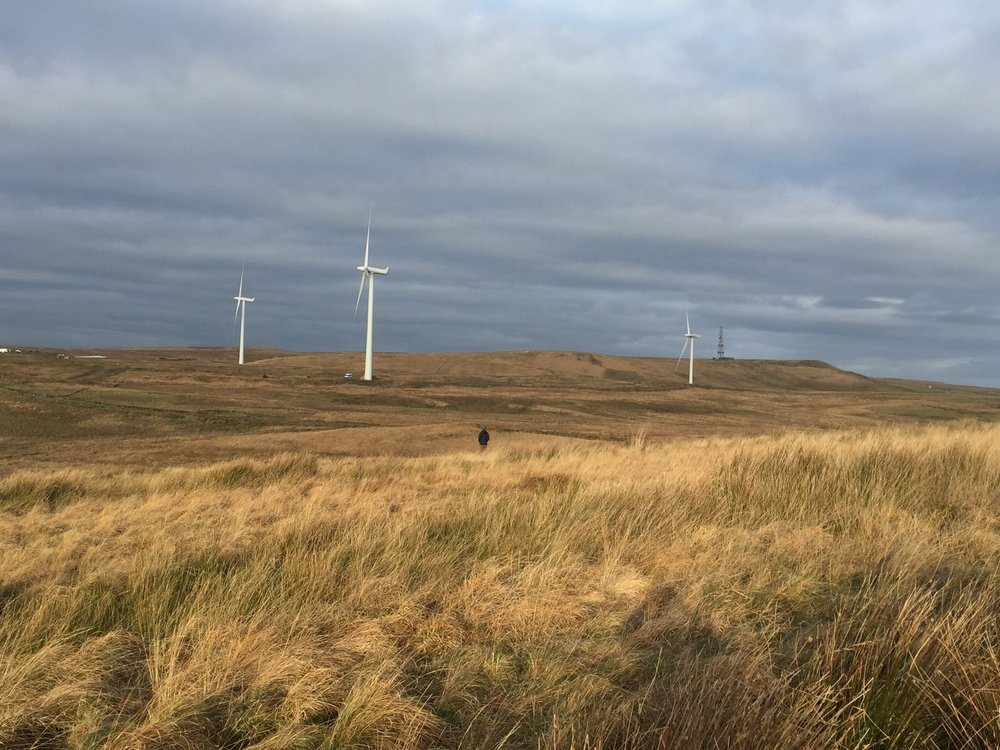 Whitelee Wind Turbines on Horizon