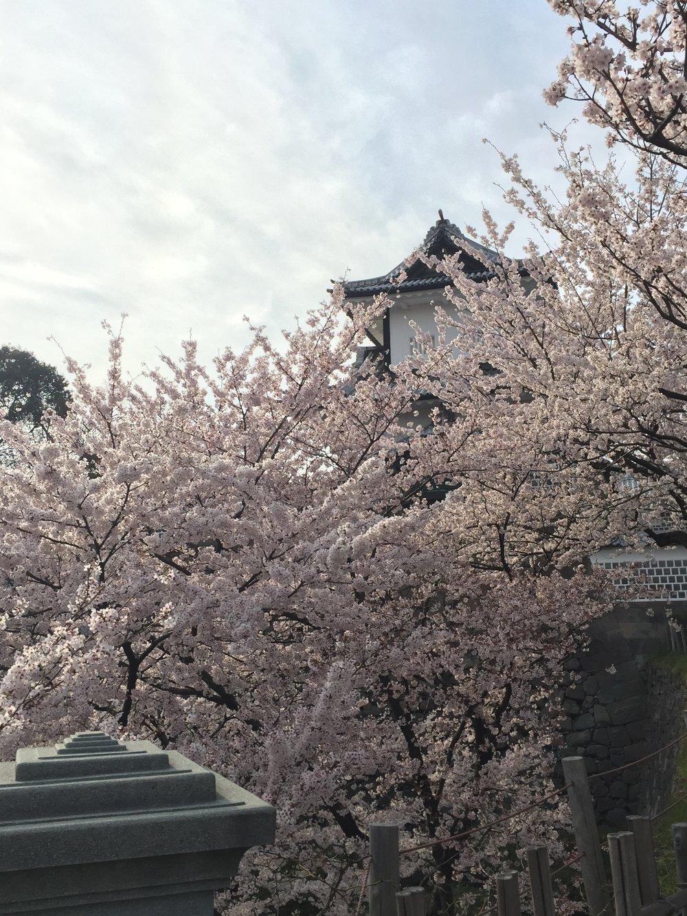 Visa Vis Travel Roulette Kanazawa Castle Japan