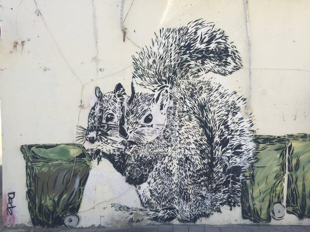 Tel Aviv in Review: Street Art!