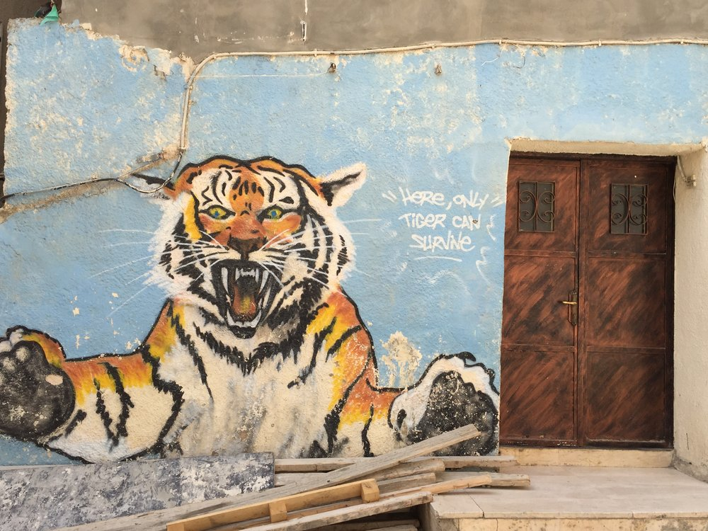 """A message painted on the exterior walls of the refugee camp """"Here, only tiger can survive"""""""