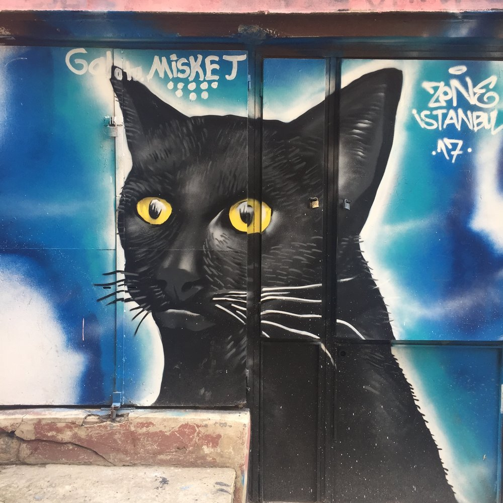 Istanbul street art of a cat