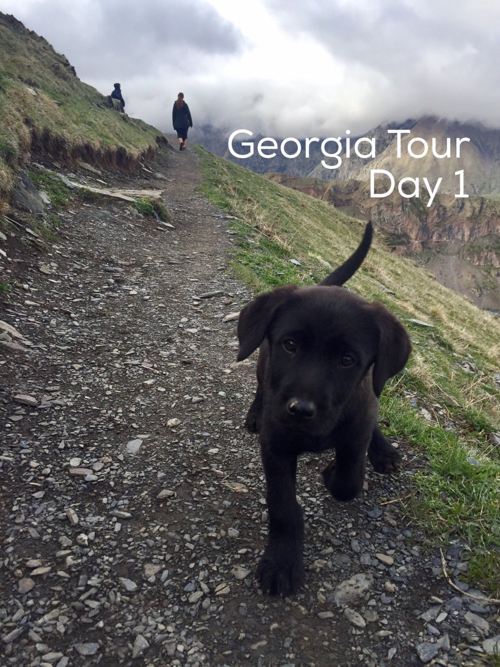 Republic of Georgia Tour