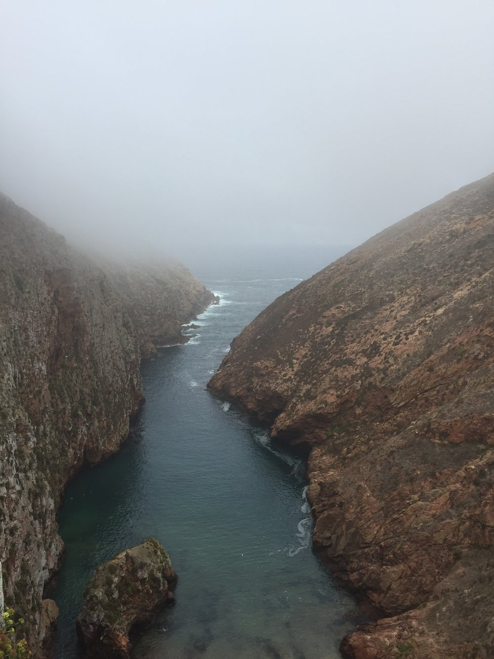 The misty and blustery start to Berlenga Island