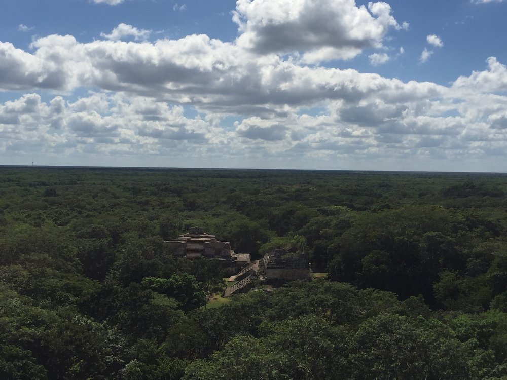 View from the top over the ruins of Ek'Balam and out into the jungle.