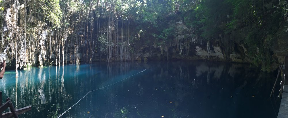 Cenote outside of Merida, Mexico. These are a bit creepy but so magical.