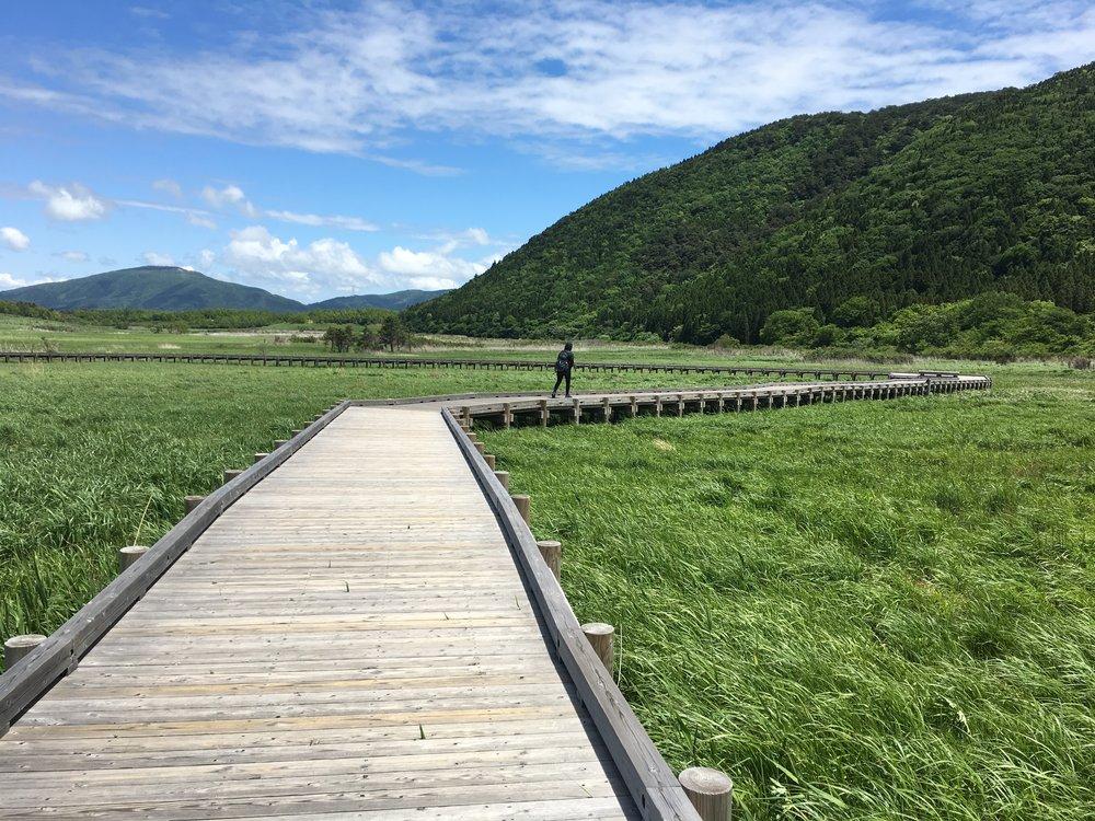 Marshland Trail