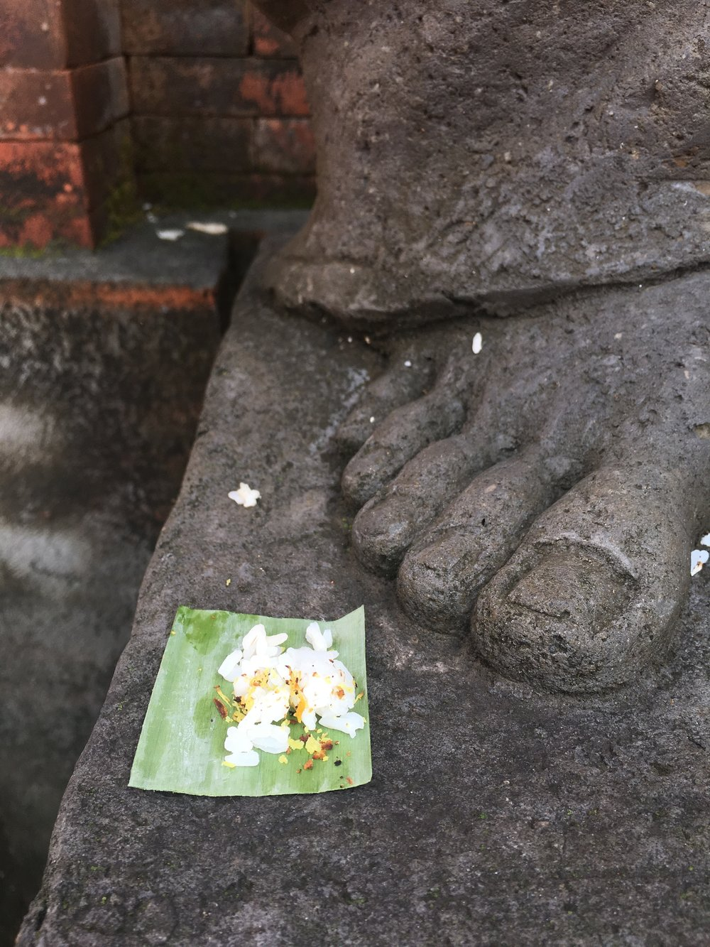 7 Days in Ubud, Bali: Offerings Everywhere