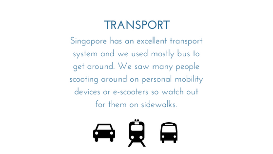 Singapore Transport.png