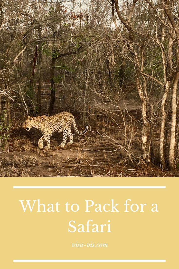 What to Pack for a Safari: Leopard in the South African Bush