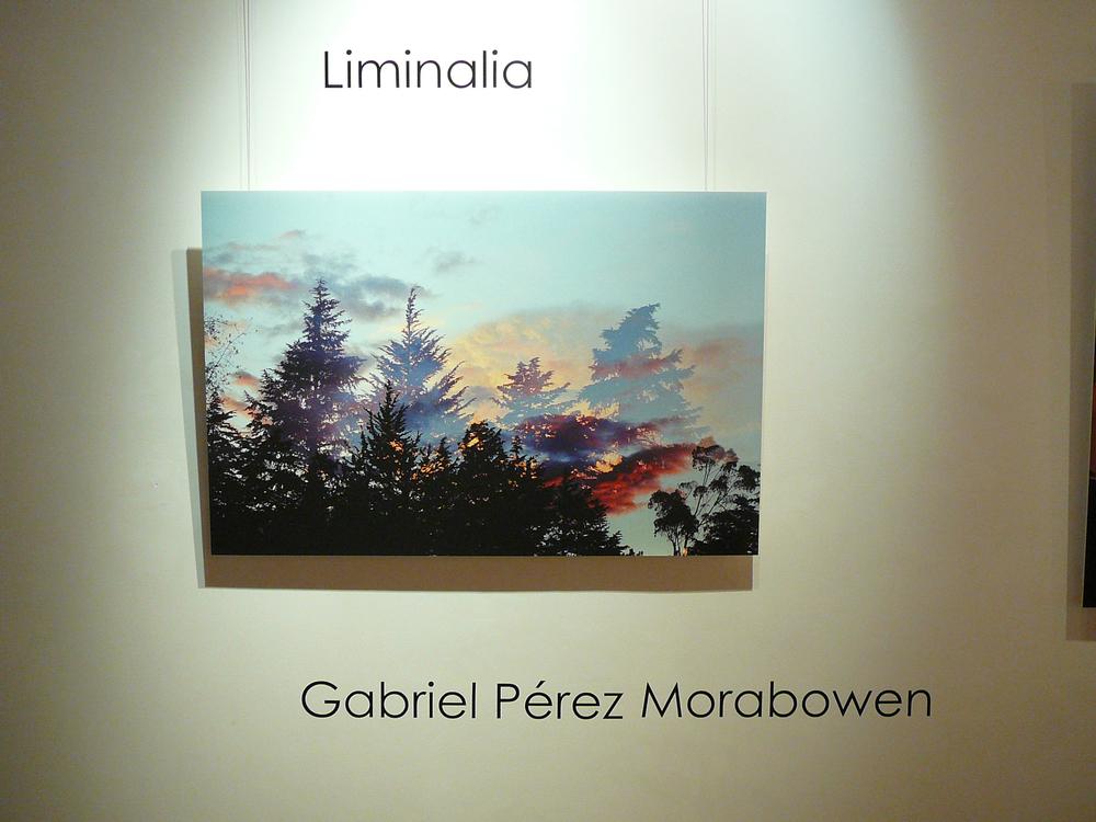 Expo Liminalia julio 2015 048.JPG