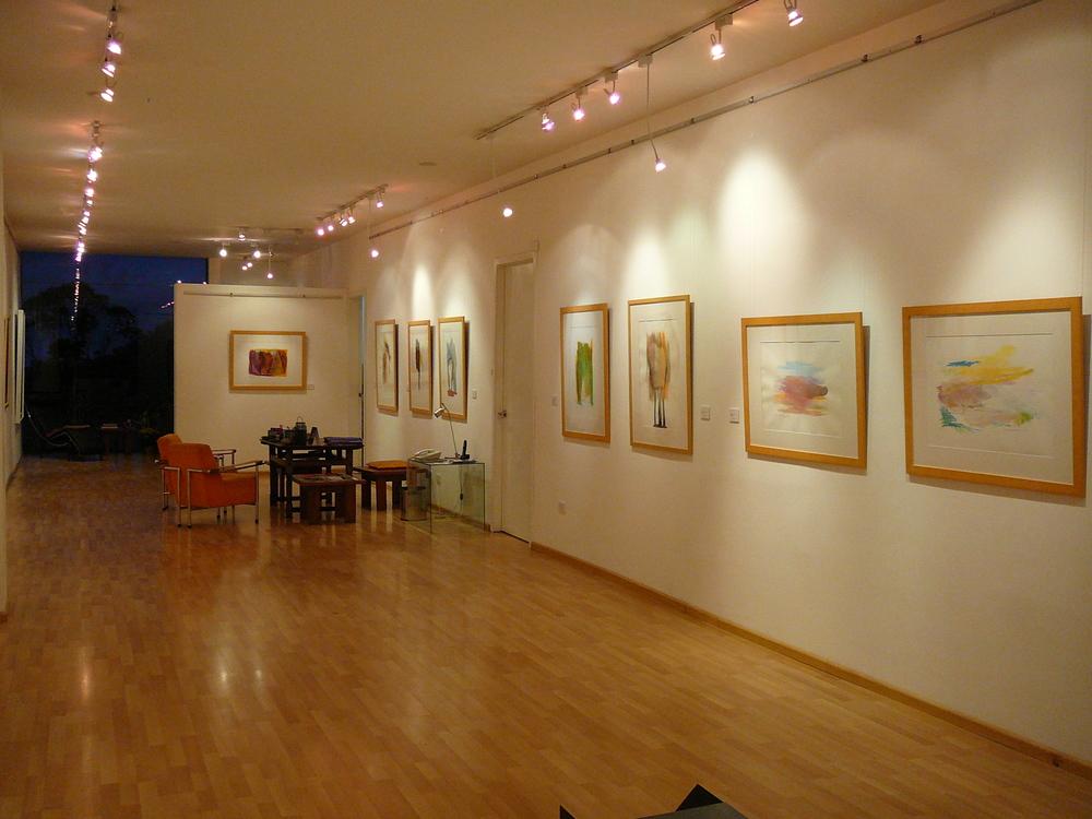 Exposición Eduardo Arroyo abril 2013 (13).JPG