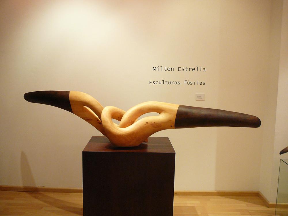 Muestra Milton Estrella 010.JPG