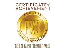 PX3-certificate-gold.jpg