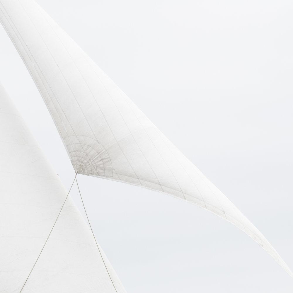 Sails 8134