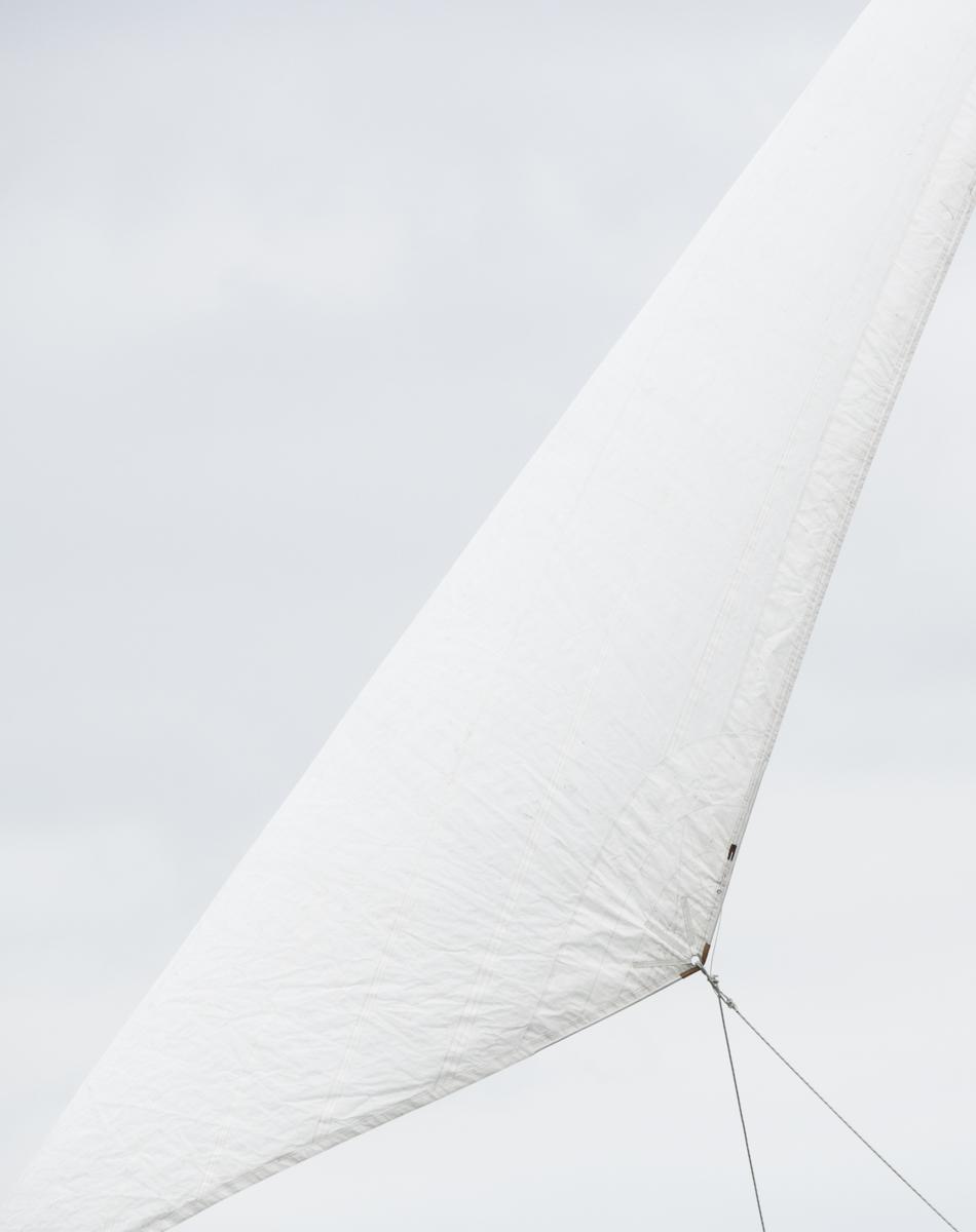 Sails 9319