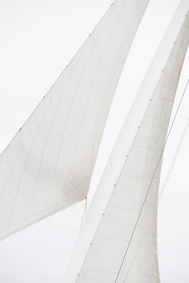Sails 8203