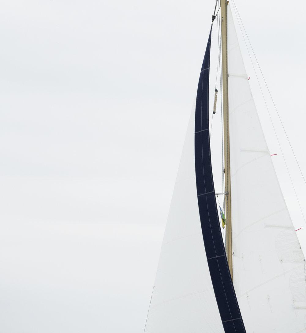 Sails 8538