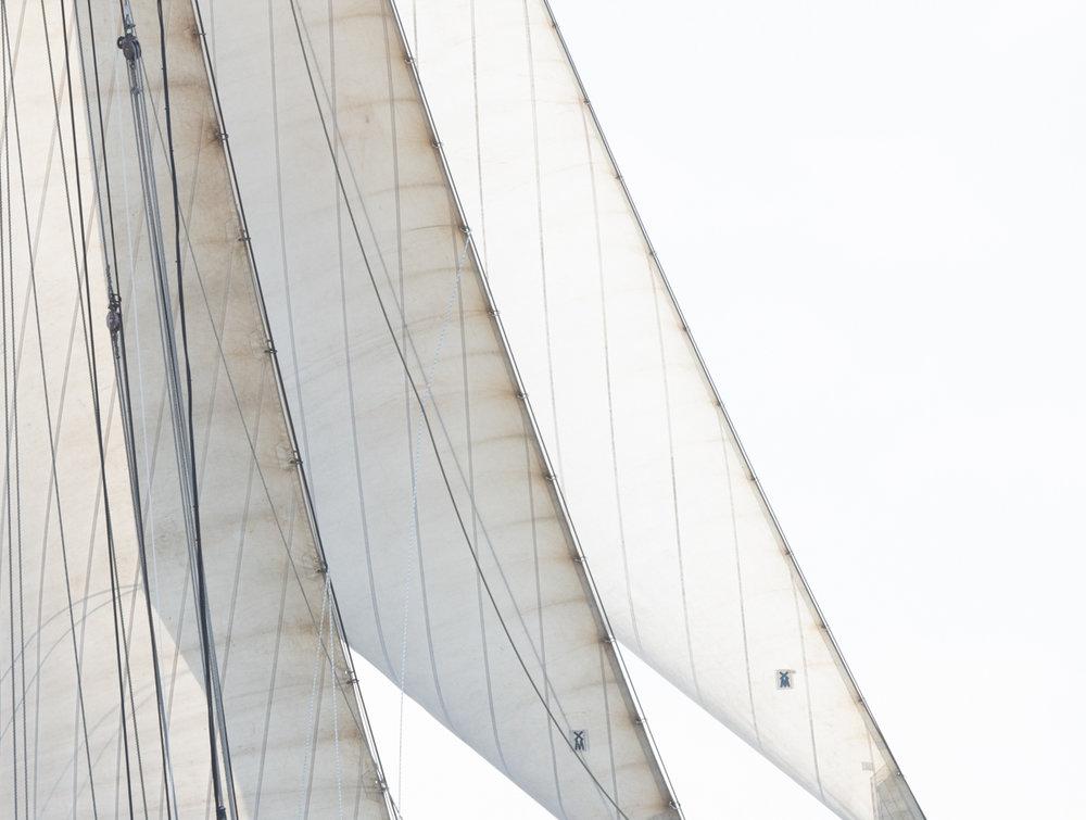 Sails 8702