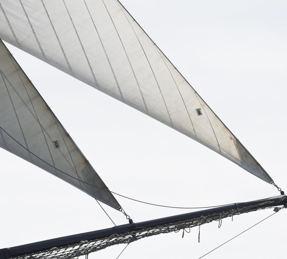 Sails 8713