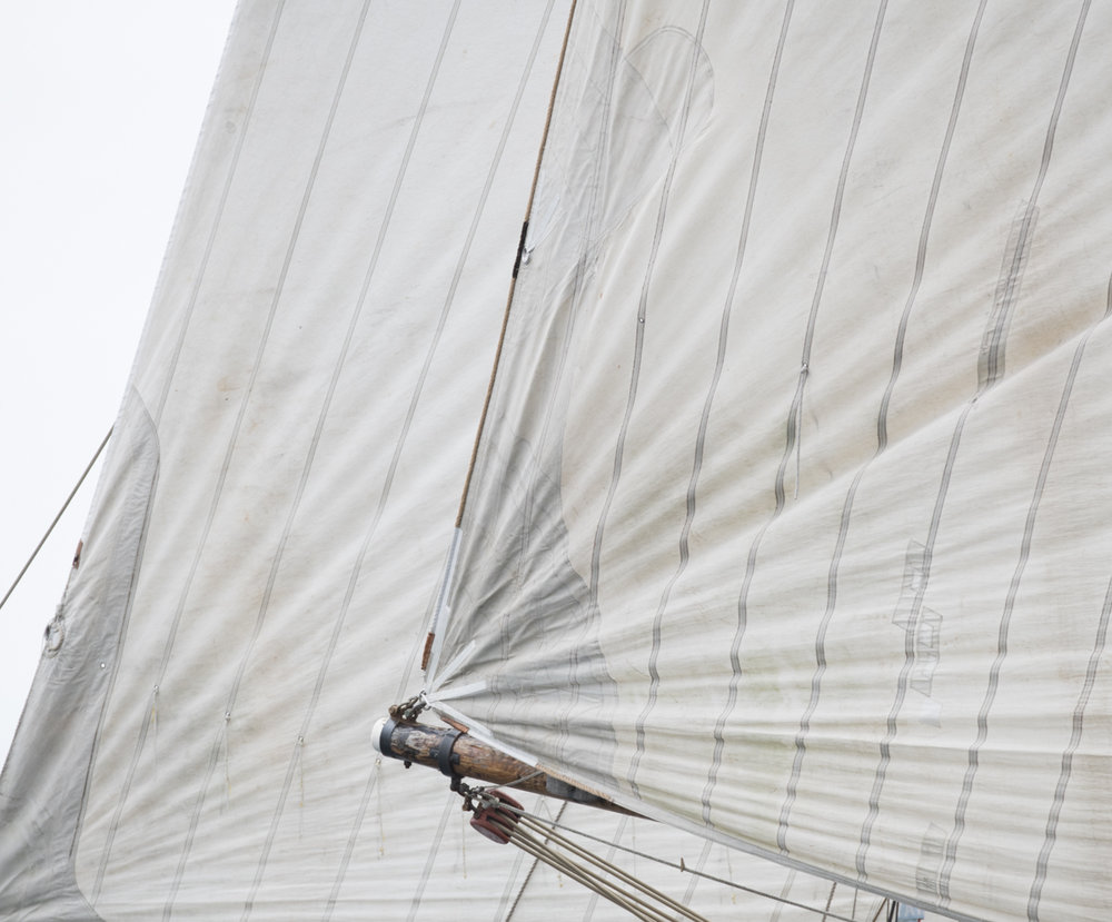 Sails 9054
