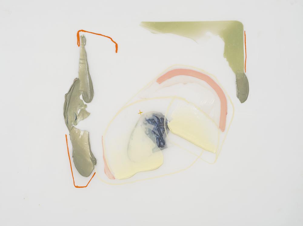 Délimitation, 2016 acrylique et crayons sur Mylar     29'' x 36''