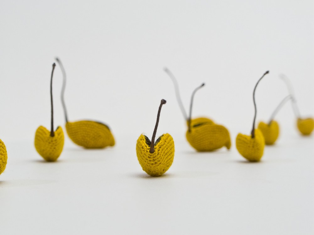 Esther Traugot Fleet, Detail, 2013  seed pods (Grevillea Robusta, Australian Silver Oak), dyed cotton thread, wood board riser 1.5 x 9 x 22 inches