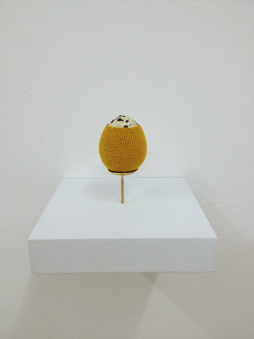 Esther Traugot Egg series 2, detail, 2014 three coturnix quail egg shells, dyed cotton thread, brass mounts, wood shelves each egg on shelf: 3.5 x 3 x 3 inches