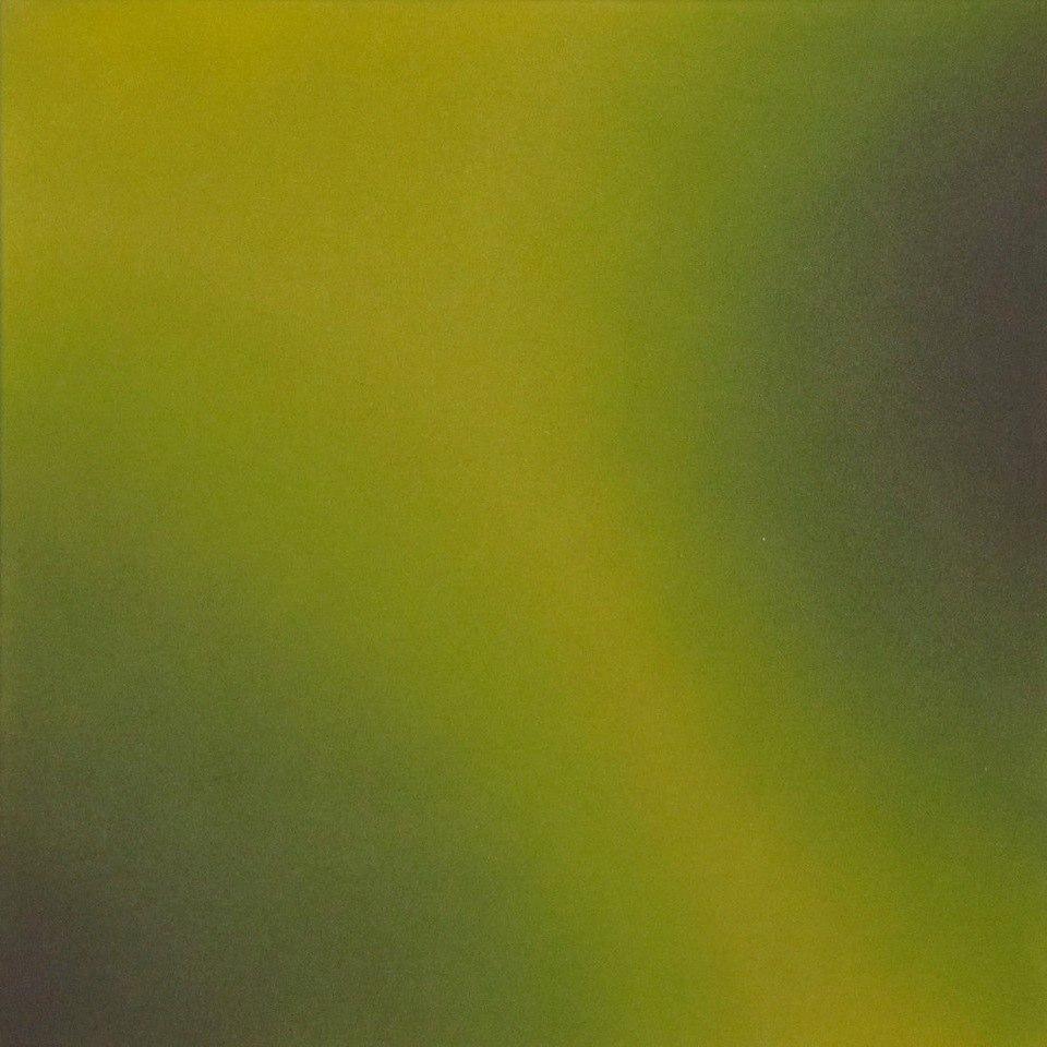 Dianne Romaine Chroma 12, 2010 acrylic on canvas 24 x 24 inches