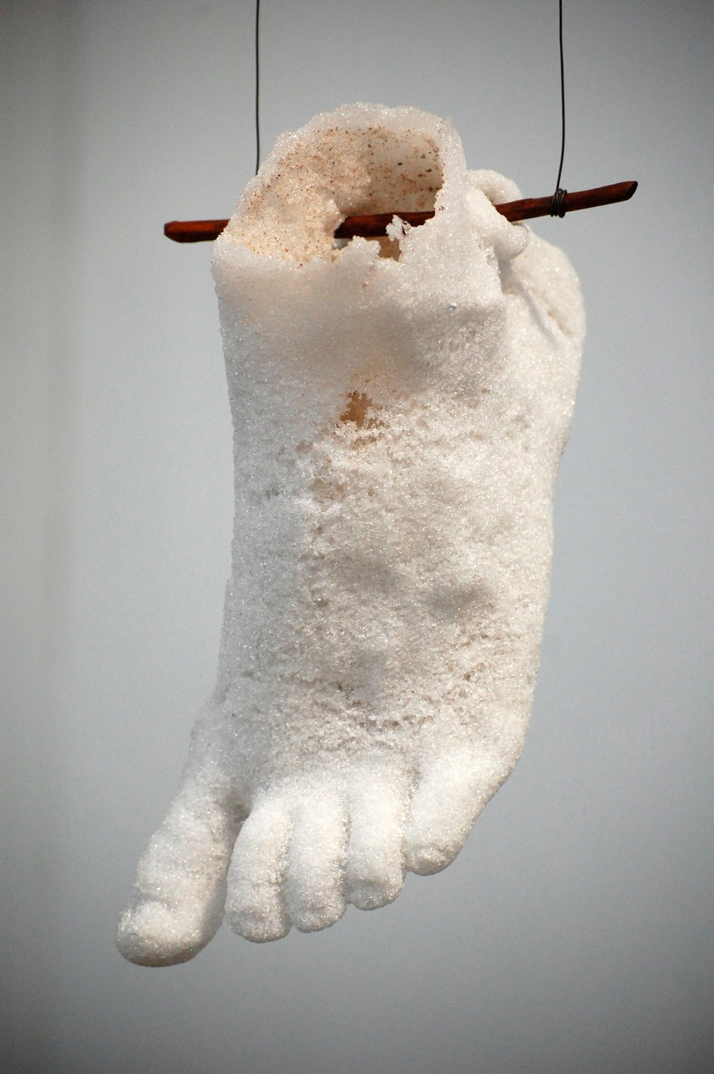 Lynne-Rachel Altman Phantom Foot, 2013 kiln fired sintered glass approximately 12 x 6 x 5 inches