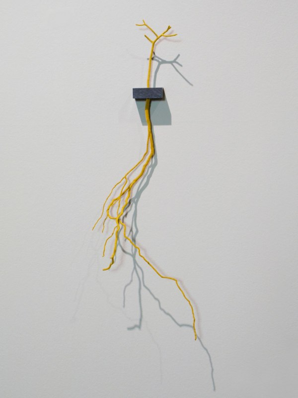 Esther Traugot Rootsy, 2012  tree root and twig, ebony wood shelf,  hand-dyed cotton thread 23 x 4 x 9 inches