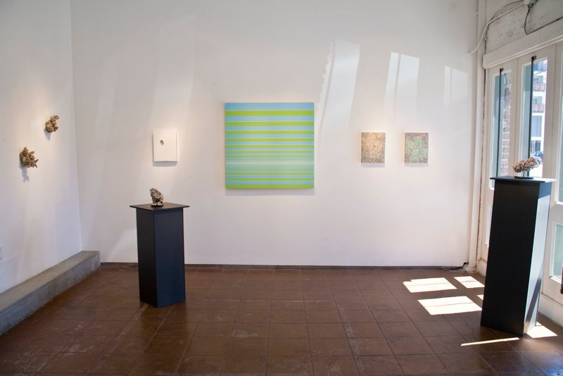 SUPER OPTIC Installation View