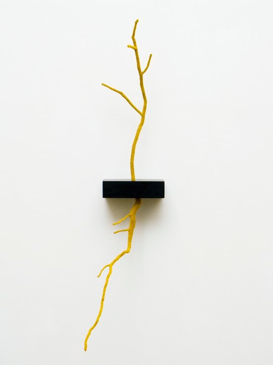 Esther Traugot Unearthed, 2011 hand-dyed cotton thread, stick and root, ebony wood shelf 13.5 x 3.24 x 5.75 inches edition of 5