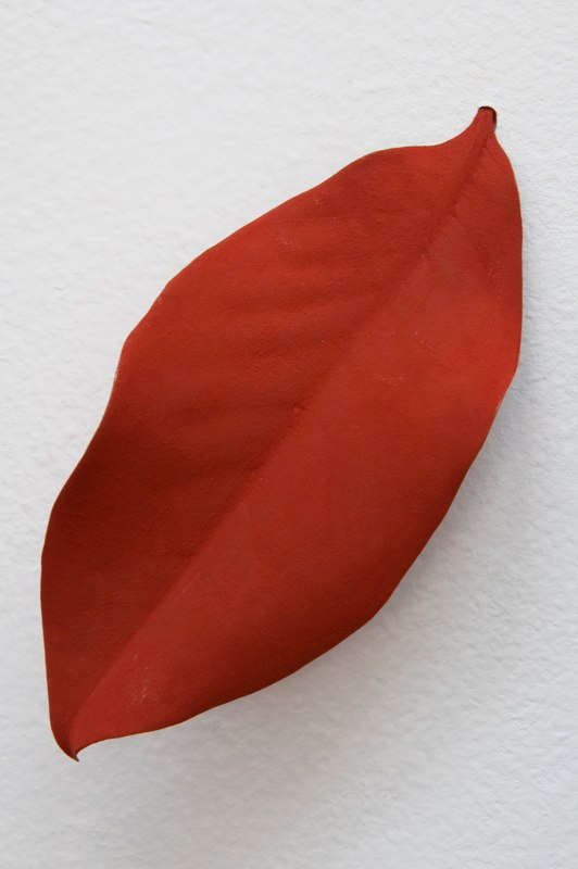 Mari Andrews Diagonal Rust Leaf, 2008 magnolia leaf, pigment  6 x 3.75 x 1.5 inches