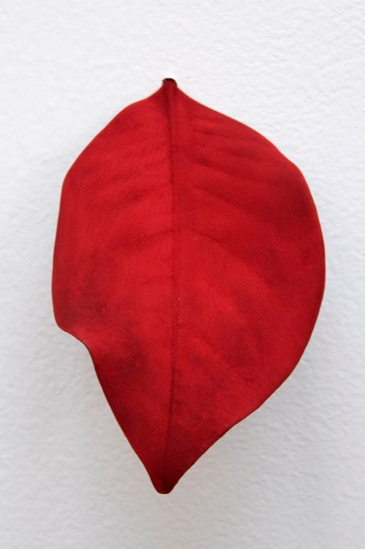 Mari Andrews Multi-Red Leaf, 2008 magnolia leaf, pigment  6.25 x 3.25 x 1 inches