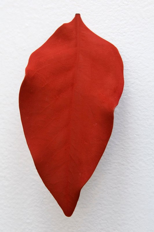 Mari Andrews Red Orange Leaf, 2008 magnolia leaf, pigment  5 x 3.25 x 1 inches