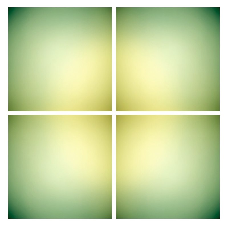 Keira Kotler Lime 023109 [grid], 2010,  4 LightJet prints on aluminum 50 x 50 inches overall