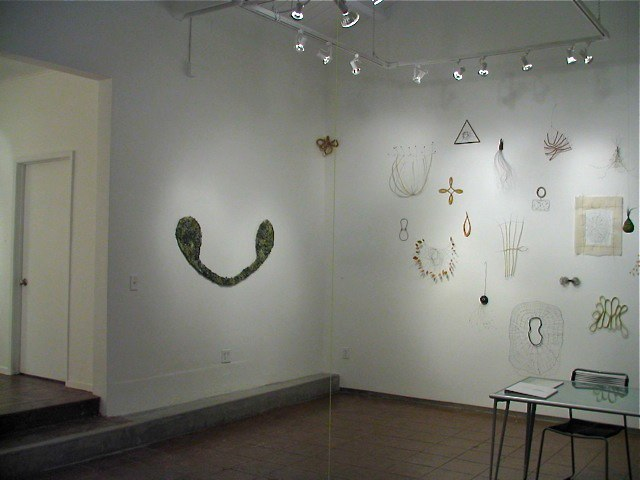 Mari Andrews Installation View variable sizes