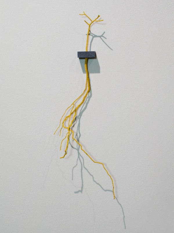 Rootsy, 2012, tree root and twig, hand-dyed cotton thread, ebony wood shelf, 23 x 9 x 4.25 inches
