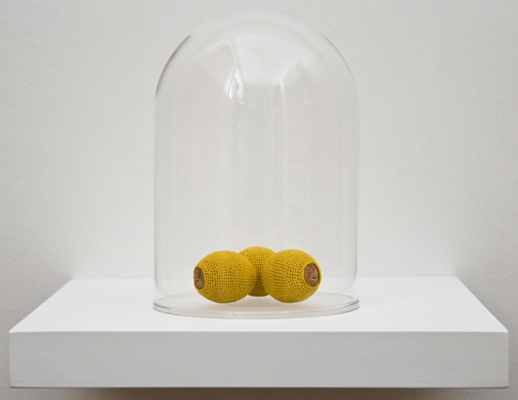 Esther Traugot, Seed Dome (Bay Laurel), 2014, bay laurel seed, hand-dyed cotton thread,  glass, wood shelf, 6 x 6 1/2 x 6 1/2 inches