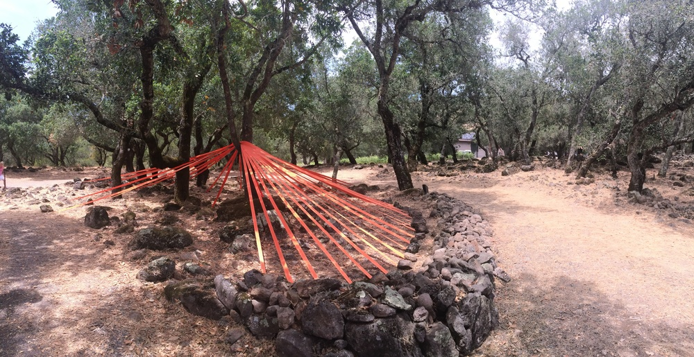 Branching Out, 2015, 2 inch polyester webbing, metal stakes, rocks, dimensions variable, Paradise Ridge Winery, Santa Rosa, CA, 2015
