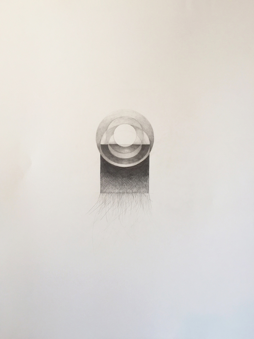 Ghidini, Grace 8, 2015, graphite and mica dust on paper, 28 1/2 x 22 1/2 inches