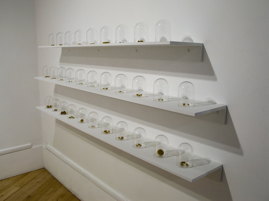 Seeds installation at Bedford Gallery (side view), 2012