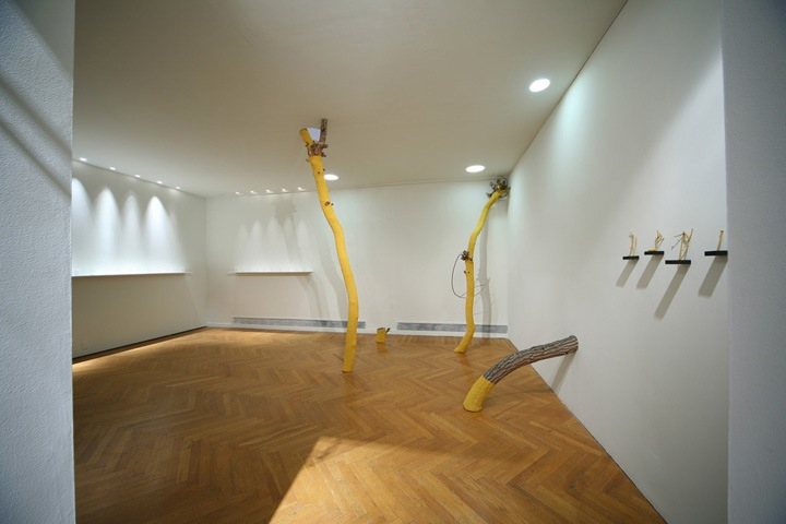 Untitled (Forest), installation view, 2008-2009