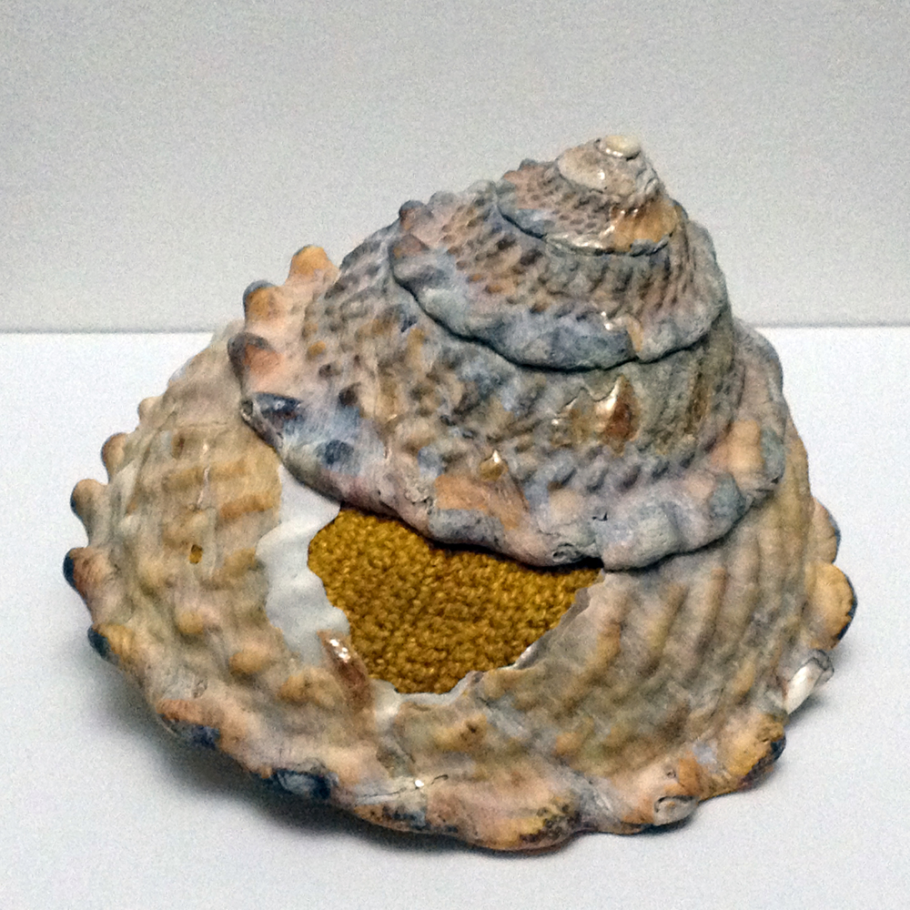 Corocol Shell (2M) (detail), 2015, shell, hand-dyed bamboo yarn, 3 x 4 x 3 inches