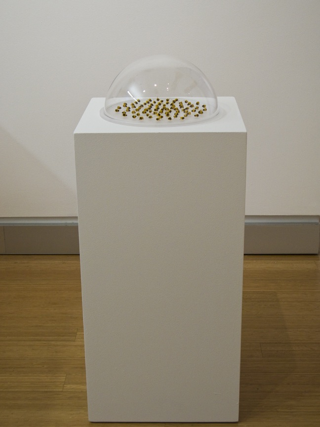 "Esther Traugot, ""Huddle 2 (Workers),"" 2015, frosted plexi base, plexi dome, 150 found dead honeybees, dyed cotton thread, 6 ¼ x 15 ½  (diameter) inches"