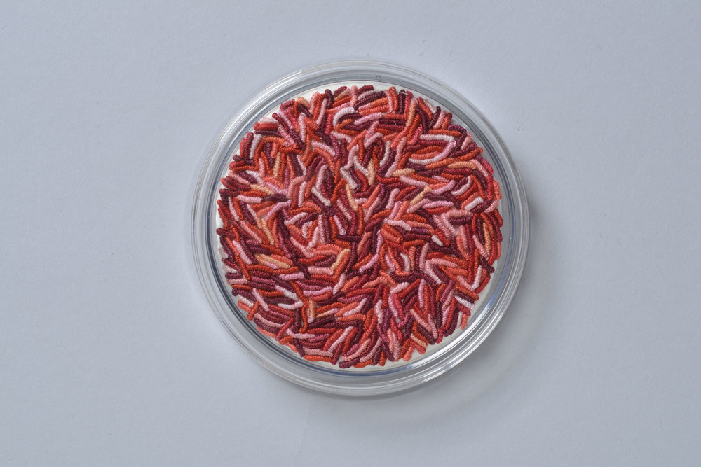 "Ruth Tabancay, Microbiology Lab Series, ""Serratia marcescens TNTC (too numerous to count),"" 2016, embroidery, 1 inch high x 4 inches diameter"